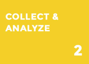 COLLECT & ANALYZE